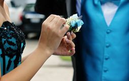 Prepare the corsage Stock Image
