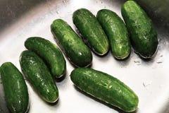 Prepare cucumber. Stock Photos