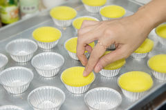 Prepare cupcake liners in tray Royalty Free Stock Images