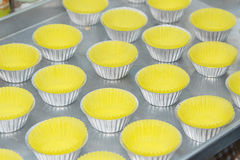 Prepare cupcake liners in tray Stock Image