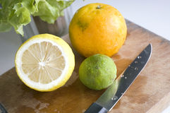Prepare cutting fresh lemon Royalty Free Stock Photos