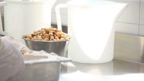 Prepare ice cream with professional machine, hazelnut flavor stock video