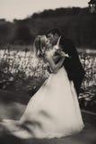 Prepare a la novia de las curvas encima y besa su situación en el camino fotografía de archivo libre de regalías