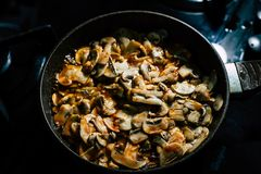Cooking Mushrooms: Champignons royalty free stock photo