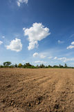 Prepare plantation with blue sky Royalty Free Stock Images
