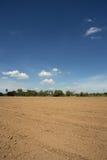 Prepare plantation with blue sky Royalty Free Stock Photos