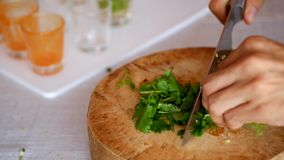 Prepare que cozinha desbastando o vegetal video estoque