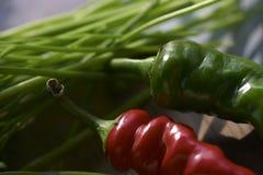 Prepare seasoned dishes Stock Photography
