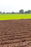Prepare soil tillage cultivation. Landscape view wide areas of land were prepared for plowing paddy crop cultivation Royalty Free Stock Photo