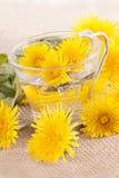 Prepare some dandelion tea in a glass cup Stock Photo
