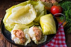 Prepare the stuffed cabbage rolls Royalty Free Stock Image