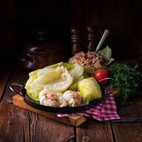 Prepare the stuffed cabbage rolls Stock Images