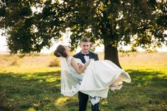 Prepare tomó a la novia en sus brazos y la llevó al campo en fondo del árbol grande El novio besa a la novia imagen de archivo