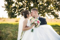 Prepare tomó a la novia en sus brazos y la llevó al campo en fondo del árbol grande El novio besa a la novia fotografía de archivo