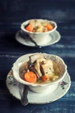 Prepared cabbage and ribs Stock Images