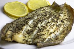 Prepared, cooked, fried, baked sole fish fillet. royalty free stock image