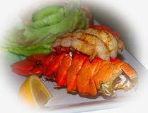 Prepared and cooked lobster tail starter. With salad and a slice of lemon Royalty Free Stock Image