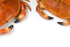 Prepared crab Stock Photo
