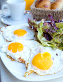 Prepared egg under the sun Royalty Free Stock Image