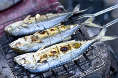 Prepared fish on grappling iron. Close up of prepared fish on grappling iron Stock Photo