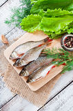 Prepared for frying fish roach Stock Photos