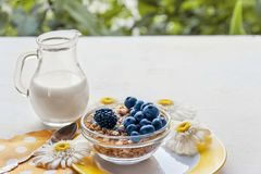 Prepared a healthy Breakfast of muesli with blueberries and natural yoghurt in a glass jug. Copy space. stock image