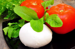 Prepared the ingredients for the salad caprese Royalty Free Stock Images