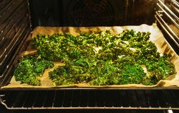 Prepared kale chips in the oven stock photography