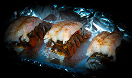 Prepared lobster tails Stock Photography