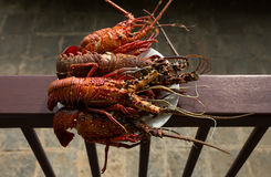 Prepared Lobsters Royalty Free Stock Photo