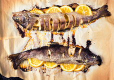 Prepared mackerel Royalty Free Stock Photos