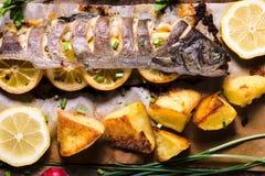 Prepared mackerel fish Stock Image