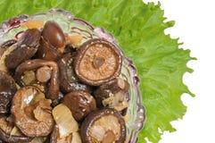 The prepared mushrooms. The prepared mushrooms will decorate any celebratory table Stock Image