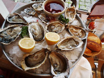 Prepared Oysters Royalty Free Stock Photos