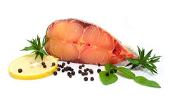 Prepared pangasius fish fillet pieces and spices Stock Photography
