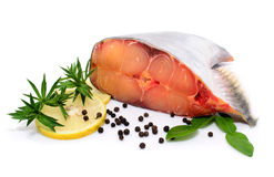 Prepared pangasius fish fillet pieces and spices Royalty Free Stock Photos