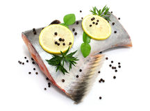 Prepared pangasius fish fillet pieces and spices Royalty Free Stock Photography