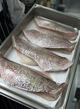 Prepared Raw Fish Falays. Photographs of four prepared raw fish falays stock photo