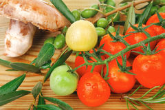 Prepared raw vegetables on cutting board Royalty Free Stock Photo