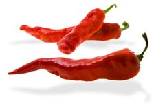Prepared red pepper Royalty Free Stock Photos