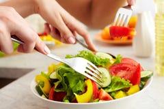 Prepared salad Stock Image
