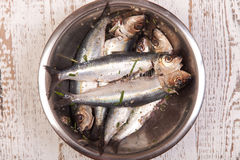 Prepared sardines for cooking Royalty Free Stock Photography