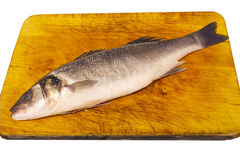 Prepared sea bass Stock Photo