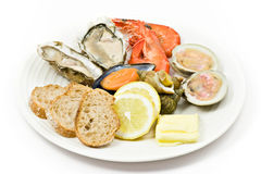 Prepared Shellfish. On plate. Isolated on White Royalty Free Stock Photos