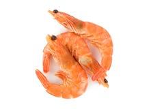 Prepared shrimp Royalty Free Stock Image