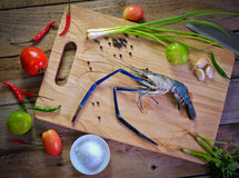 Prepared shrimp on the board with spice Stock Photos