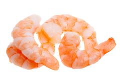 Prepared shrimp isolated Stock Photos