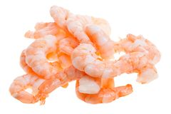 Prepared shrimp isolated Stock Images
