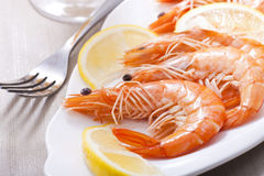 Prepared shrimps Stock Photography