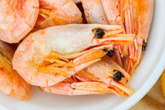 Prepared shrimps macro Royalty Free Stock Photos
